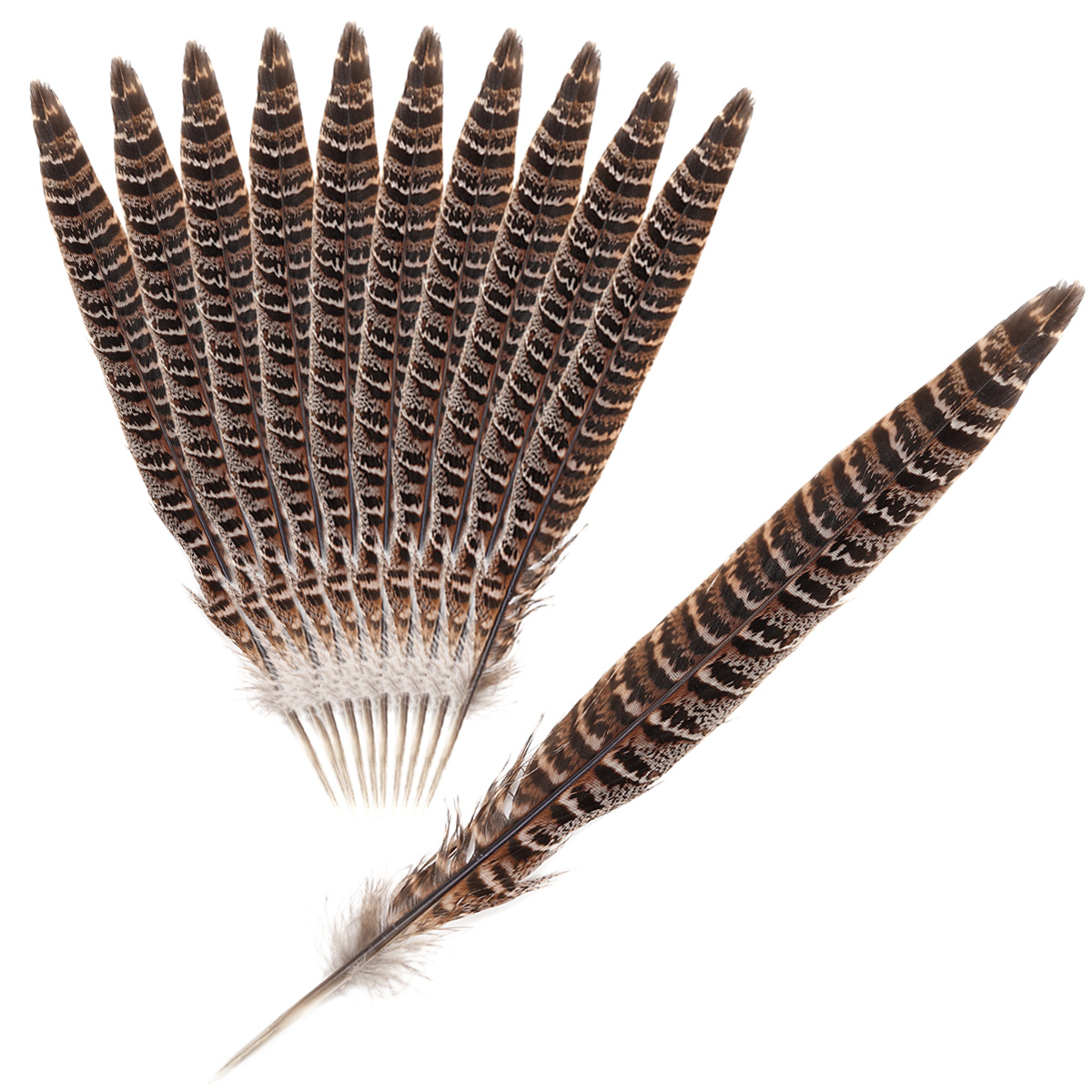 25-30CM//10-12inches Hen Pheasant Tail Feathers For Crafts DIY Wedding Decora